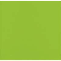Lime green napkin 2 ply  380x380mm