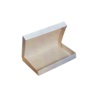 Caja lunch  290x420mm H60mm